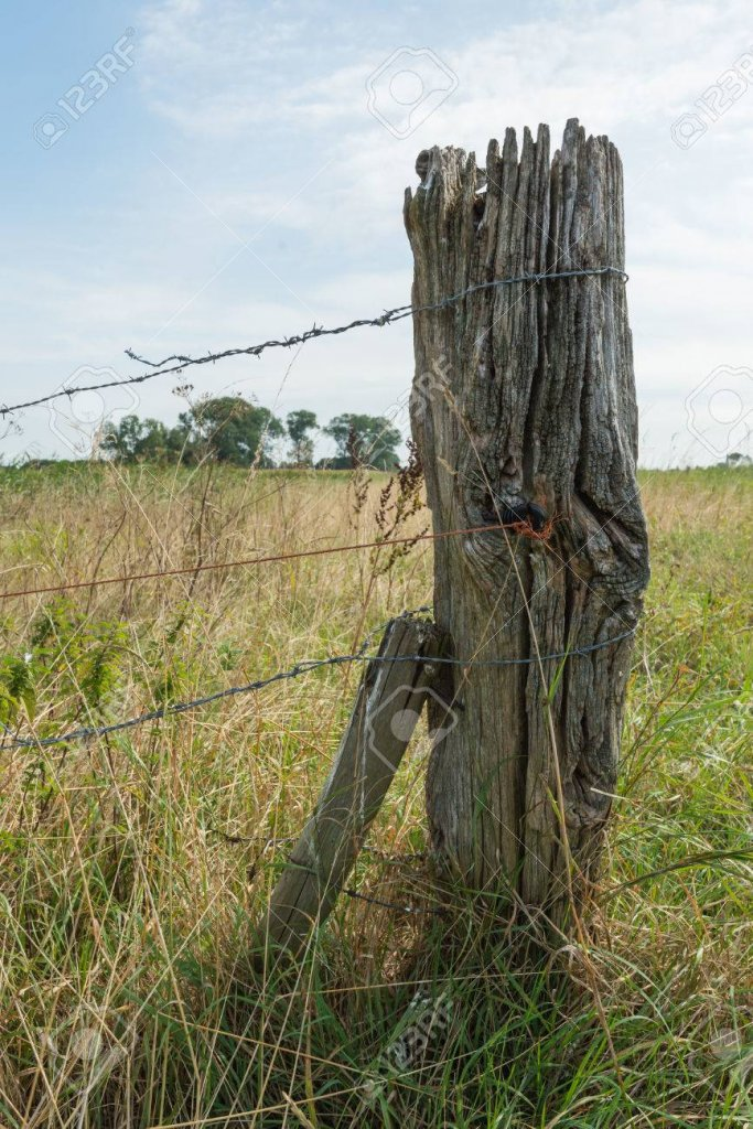 44060021-closeup-of-an-old-and-weathered-wooden-post-with-barbed-wire-in-a-rural-area-in-the-s...jpg