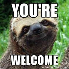 a1f4fcabc9e7692cf52023bade881ddc--sloth-memes-sloths.jpg