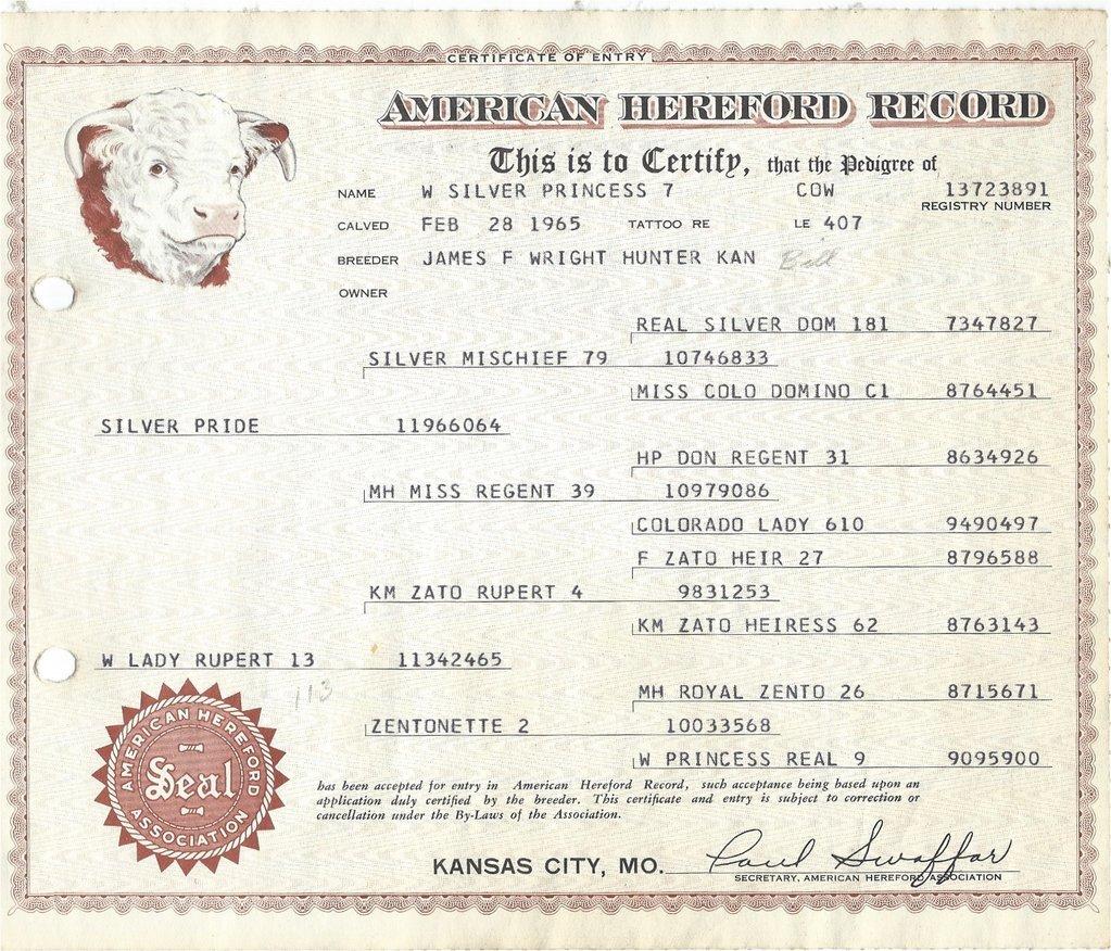 Hereford Certificate 2.jpg