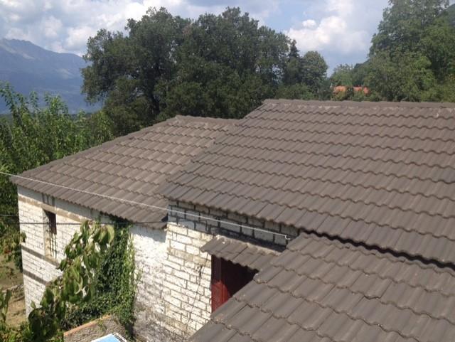 Pesta roof.jpg